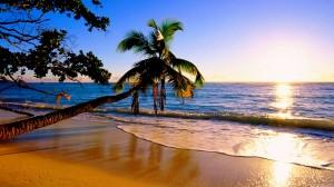 Paradise-Island-7